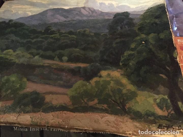 EVELIO PALÁ, PINTURA AL ÓLEO SOBRE LIENZO, PAISAJE, MEDIDAS APROX.65X50CMS. (Arte - Pintura - Pintura al Óleo Contemporánea )
