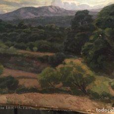Arte: EVELIO PALÁ, PINTURA AL ÓLEO SOBRE LIENZO, PAISAJE, MEDIDAS APROX.65X50CMS.. Lote 109375143