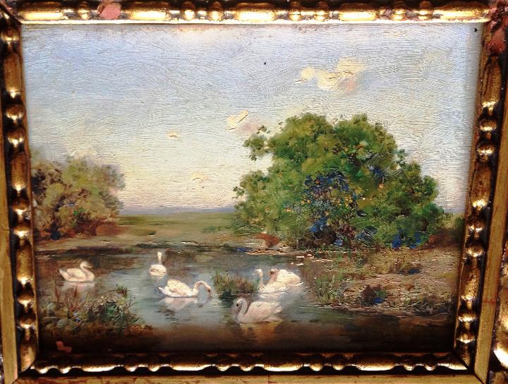 Arte: OLEO SOBRE TABLA S. XIX- FIRMADO CAMOYANO- CISNES - Foto 2 - 108928963