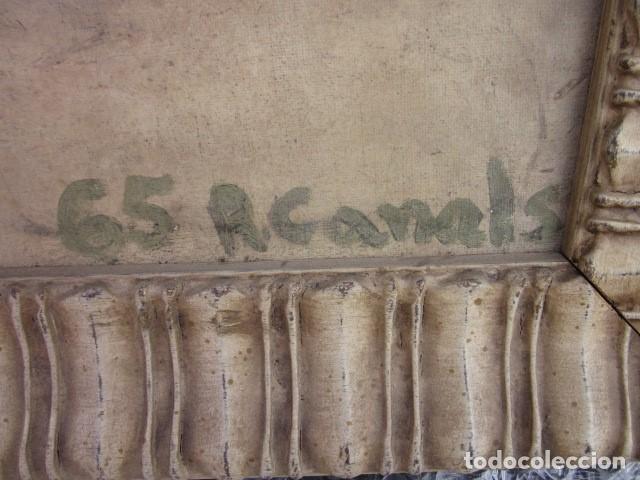 Arte: cuadro oleo bodegon enmarcado con firma R. Canals, año 65, medidas: 68 x 59 - Foto 2 - 110330611
