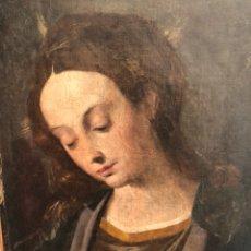Arte: SCIPIONE PULZONE. VIRGEN. ÓLEO SOBRE LIENZO. MANIERISMO. BARROCO. CONTRARREFORMA. ITALIA. SIGLO XVI.. Lote 110834588