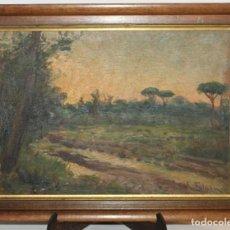 Kunst - AURELIO TOLOSA Y ALSINA (1861-1938) - PAISAJE - ÓLEO SOBRE TABLA - 111629711