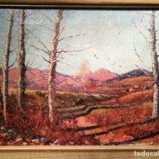 Arte: PAISAJE DE OLOT POR IVO PASCUAL (1883-1949). Lote 111904051