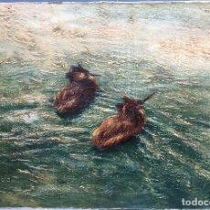 Arte: JOSEPH OBERTHÜR (1872-1956) PINTOR FRANCÉS - ÓLEO SOBRE TABLA - PATOS EN EL ESTANQUE. Lote 112119475