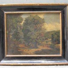 Arte: EVELI TORENT MARSANS (1876-1940), PAISAJE, PINTURA AL ÓLEO. 53X46CM. Lote 114888687