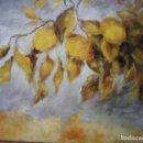 Arte: ÓLEO LIMONES CON SUS HOJAS DE 50 X 40 CM. M BRONCHUD. Lote 115628107