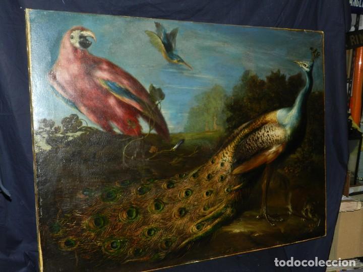 PRECIOSO OLEO BODEGON S.XVIII - PAJAROS ( RENTELADO ) , 98 X 73 CM, VER FOTOGRAFIAS (Arte - Pintura - Pintura al Óleo Antigua siglo XVIII)