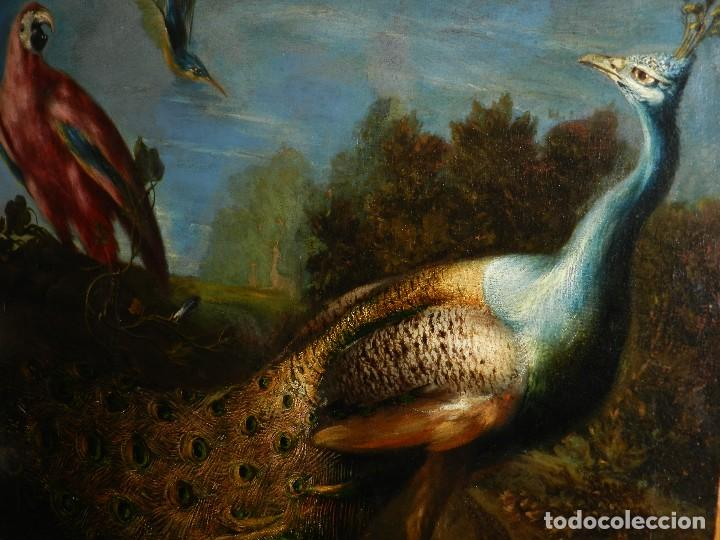 Arte: PRECIOSO OLEO BODEGON S.XVIII - PAJAROS ( RENTELADO ) , 98 X 73 CM, VER FOTOGRAFIAS - Foto 3 - 121316071