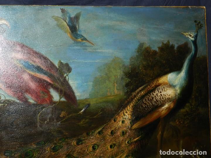Arte: PRECIOSO OLEO BODEGON S.XVIII - PAJAROS ( RENTELADO ) , 98 X 73 CM, VER FOTOGRAFIAS - Foto 7 - 121316071