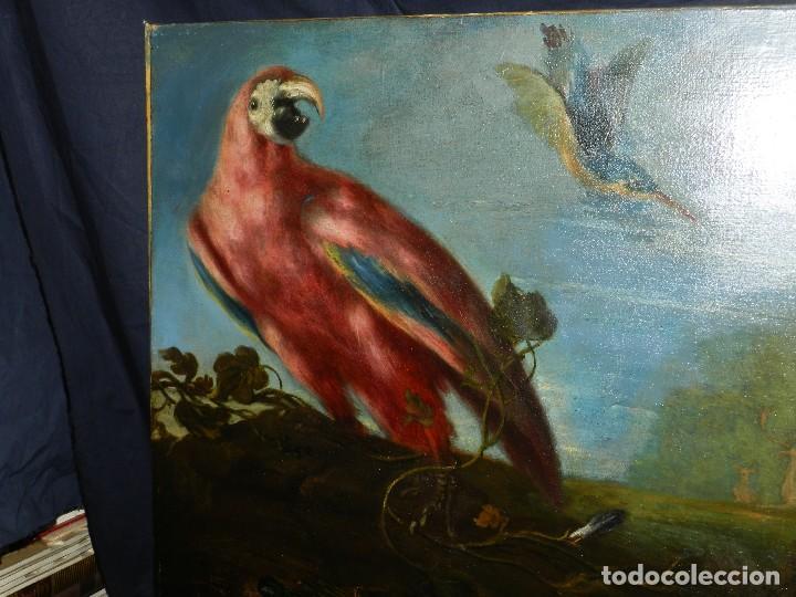 Arte: PRECIOSO OLEO BODEGON S.XVIII - PAJAROS ( RENTELADO ) , 98 X 73 CM, VER FOTOGRAFIAS - Foto 18 - 121316071