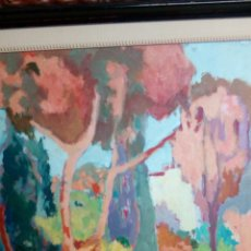 Arte: RAMON SANVISENS, JARDINES OLEO SOBRE LIENZO 65X54, FIRMADO Y ENMARCADO. Lote 122105150