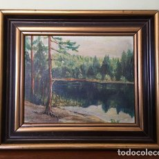 Arte: 1946 DUTCH / SIGNED OIL PAINTING / H. ANDERSEN IMPRESSIONISM / LANDSCAPE EVERGREEN FOREST . Lote 122236187