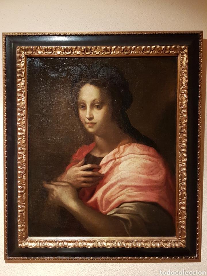 CUADRO ITALIANO ÓLEO SOBRE LIENZO SIGLO XVI DOMENICO PULIGO (Arte - Pintura - Pintura al Óleo Antigua siglo XVI)