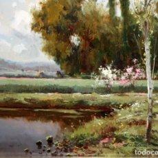 Arte: JOSEP COLOMER I COMAS (SANT FELIU DE PALLEROLS. GIRONA 1935 - 2003) OLEO SOBRE TELA. PAISAJE. Lote 126022611