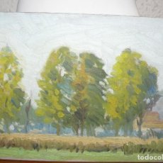 Arte: ÓLEO SOBRE TABLEX- ANÓNIMO- VISTA DEL BOSQUE. Lote 127218231