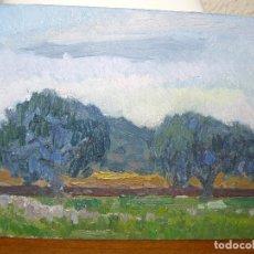 Arte: OLEO SOBRE TABLEX - ANÓNIMO - PAISAJE RURAL. Lote 127219063