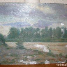Arte: OLEO / TELA - FDO. DOMINGO SOLER - PAISAJE. Lote 128010435