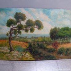 Arte: GRAN ÓLEO FIRMADO NORIEGA.. Lote 129543867