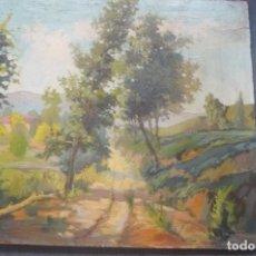 Arte: OLEO / TABLEX - ANÓNIMO - PAISAJE RURAL. Lote 131568454
