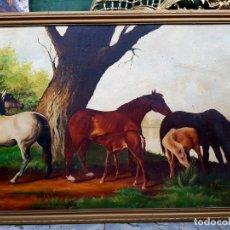 Arte: BARRY ROBIN - OLEO SOBRE LIENZO, ESCENA ECUESTRE, 81X56CM. ENMARCADO.. Lote 115499663