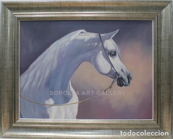 CABEZA DE CABALLO - ENSO - OLEO SOBRE LIENZO - 103X82 CM (Arte - Pintura - Pintura al Óleo Contemporánea )