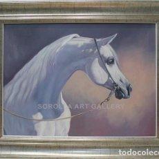 Arte: CABEZA DE CABALLO - ENSO - OLEO SOBRE LIENZO - 103X82 CM. Lote 98736746