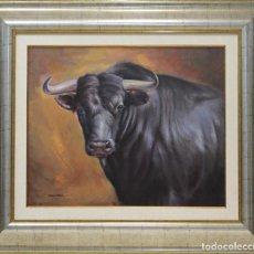Arte: TORO - MARIO DÍAZ - OLEO SOBRE LIENZO - 90X79 CM. Lote 98737296