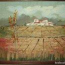 Arte: PINTURA OLEO ANTIGUO EN TABLE AÑOS 70 A 80 CAMPO PAISAJE. Lote 134042182