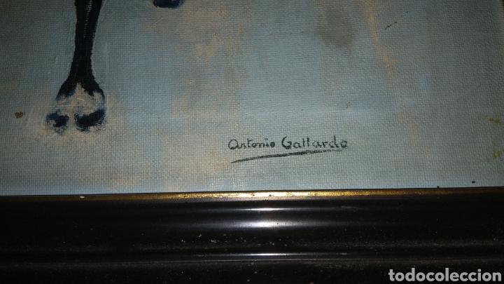 Arte: Pintura al oleo sobre lienzo firmada por antonio gallardo. - Foto 2 - 134955009