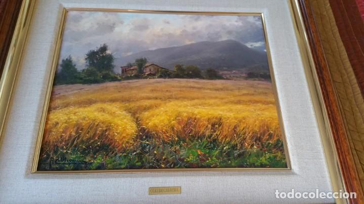 Arte: Pintura oleo sobre lienzo PERE COLLDECARRERA PLA DE POLITJES GARROTXA OLOT - Foto 3 - 135239606