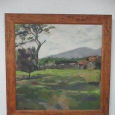 Arte: CUADRO - PINTURA AL ÓLEO SOBRE TELA - PAISAJE - CON MARCO - S. XX. Lote 136345074