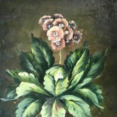 Arte: ANONIMO - FLORES. Lote 136701630
