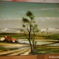 Arte: OLEO PAISAJE CAMPO SOBRE TABLA O LIENZO, FIRMADO Y DEDICADO EN TRASERA J. GARRIDO?. MEDIDAS: 46X37,6. Lote 130723194