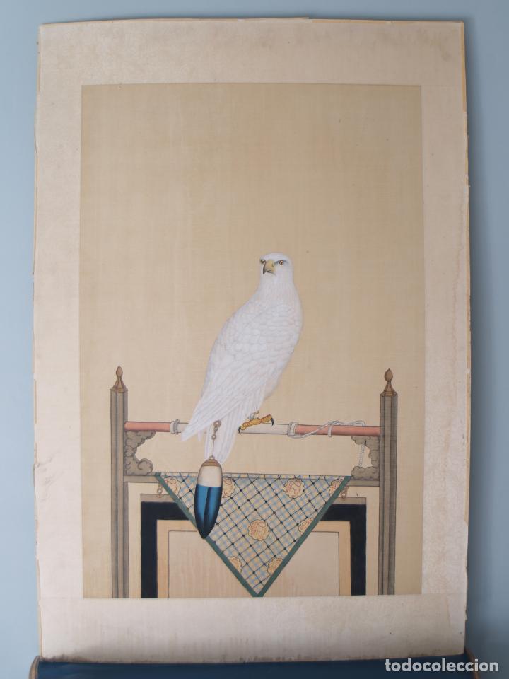 Arte: Importante Pintura Siglo XVIII, Entorno de Giuseppe Castiglione (China), Halcón Blanco - Foto 2 - 139296086