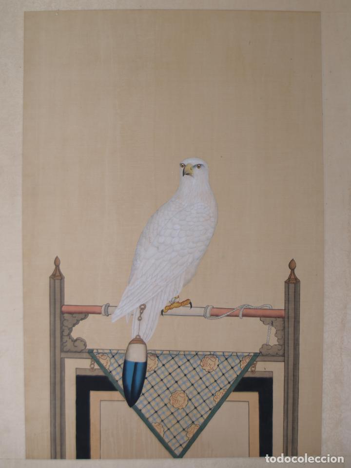Arte: Importante Pintura Siglo XVIII, Entorno de Giuseppe Castiglione (China), Halcón Blanco - Foto 4 - 139296086