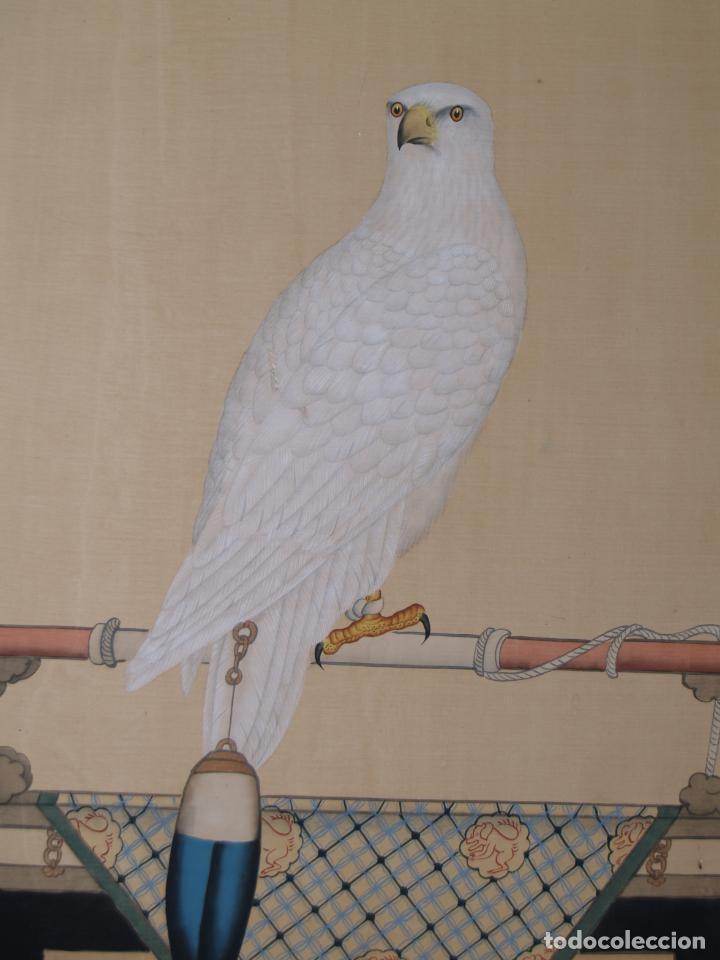 Arte: Importante Pintura Siglo XVIII, Entorno de Giuseppe Castiglione (China), Halcón Blanco - Foto 6 - 139296086