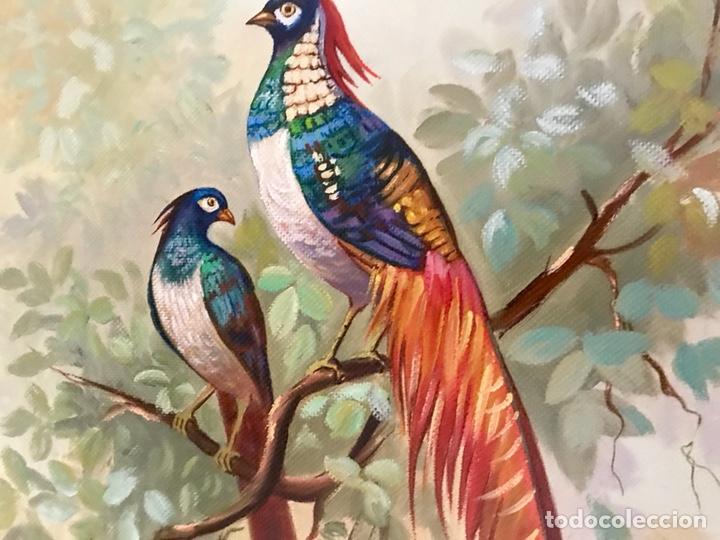Arte: Pintura al óleo sobre lienzo. Aves exóticas. Mitad siglo XX. Muy decorativo. - Foto 5 - 139940682