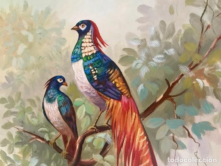 Arte: Pintura al óleo sobre lienzo. Aves exóticas. Mitad siglo XX. Muy decorativo. - Foto 6 - 139940682