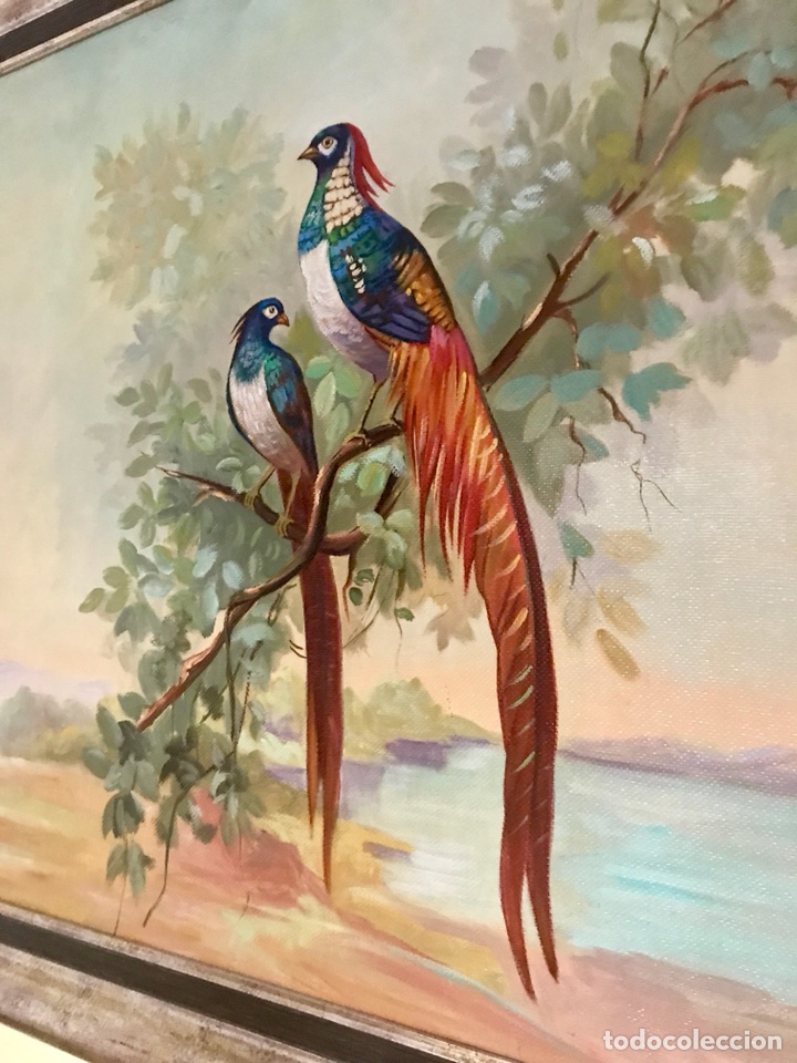Arte: Pintura al óleo sobre lienzo. Aves exóticas. Mitad siglo XX. Muy decorativo. - Foto 7 - 139940682