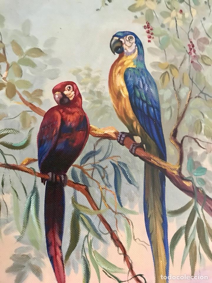 Arte: Pintura al óleo sobre lienzo. Aves exóticas. Mitad siglo XX. Muy decorativo. - Foto 9 - 139940682