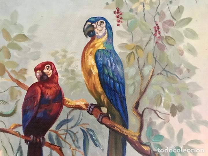 Arte: Pintura al óleo sobre lienzo. Aves exóticas. Mitad siglo XX. Muy decorativo. - Foto 11 - 139940682