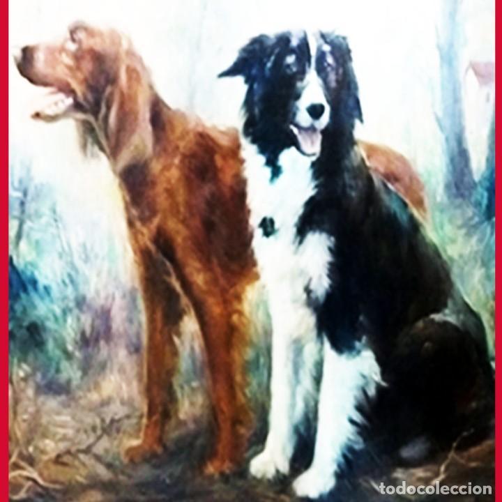 Arte: ALBORNOZ LOMBARDO,RUBEN.-SETTER IRLANDES y BORDER COLLIE-Oleo s/lienzo.101 x 91 cm.Firmado.Enmarcado - Foto 2 - 140445666