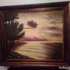 Arte: ÓLEO SOBRE TELA DEL PINTOR FEDERICO GISBERT SOLER. 67 X 78.. Lote 141238046