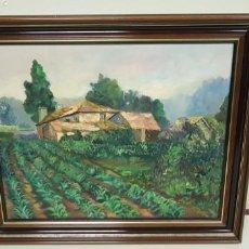 Arte: 1118- OLEO SOBRE TELA PINTOR JULIO LOPEZ 1990 CON MARCO 55X47 SOLO OBRA 45X37. Lote 141324422