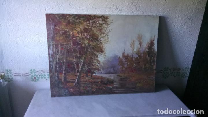 Arte: Antiguo cuadro al oleo de paisaje de bosque y rio con chopos de autor anonimo - Foto 2 - 142762026