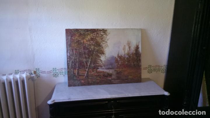 Arte: Antiguo cuadro al oleo de paisaje de bosque y rio con chopos de autor anonimo - Foto 8 - 142762026