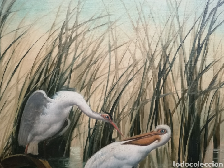 Arte: Oleo sobre lienzo, aves en el rio, escuela española, enmarcado mide 114x87cm Firmado - Foto 2 - 143149754