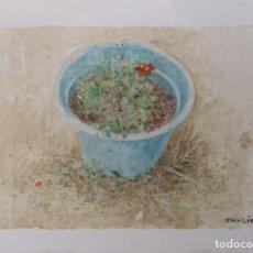 Arte: GARAIZÁBAL, JAVIER. (FERROL, A CORUÑA, 1944). FLORES III. ÓLEO SOBRE PAPEL. Lote 143585378