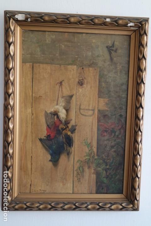 Arte: Bodegón de pájaros. Léopold Dykers (1860-1921) - Foto 2 - 140253898