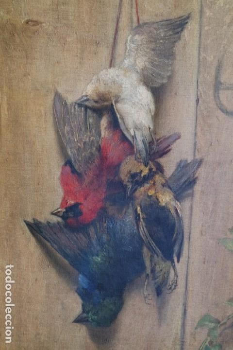 Arte: Bodegón de pájaros. Léopold Dykers (1860-1921) - Foto 3 - 140253898